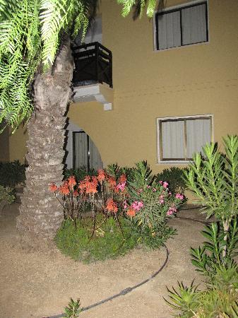 Malama Beach Holiday Village : by night