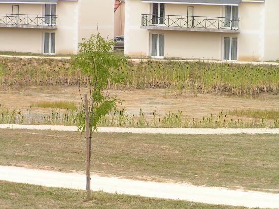 Meteor Val de Loire Resort: moeras vijver