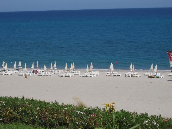 Calalandrusa Beach Resort: Mare  dal ristorante e caffè del mar