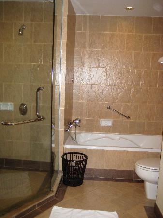 Bagno con vasca e doccia enorme separate foto di - Vasca bagno con doccia ...