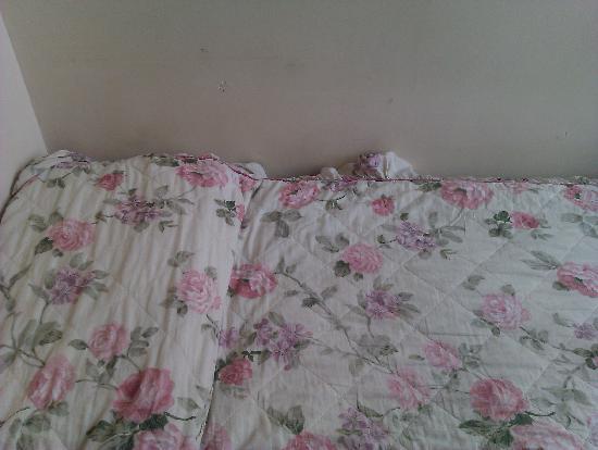 A To Z Hotel: La cama