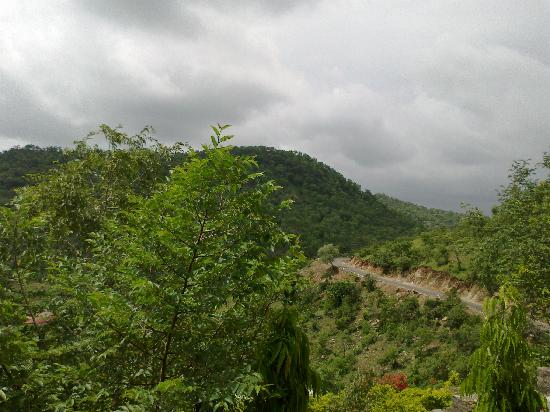 Tiger Valley Resort: view from room hills