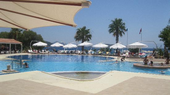 Club Muskebi: vue du bar sur la piscine et la mer