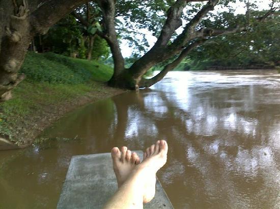 Baan Nam Ping Riverside Village: Total R & R on the Ping river