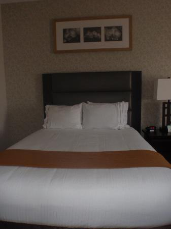 Holiday Inn Express Hotel & Suites Ottawa Airport: Room - Queen beds