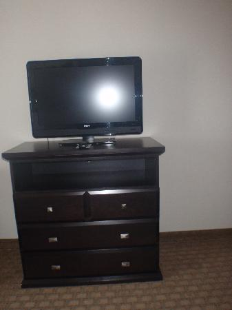 Holiday Inn Express Hotel & Suites Ottawa Airport: Room - TV