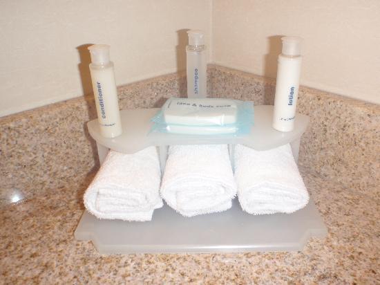 Holiday Inn Express Hotel & Suites Ottawa Airport : Bathroom Toiletries