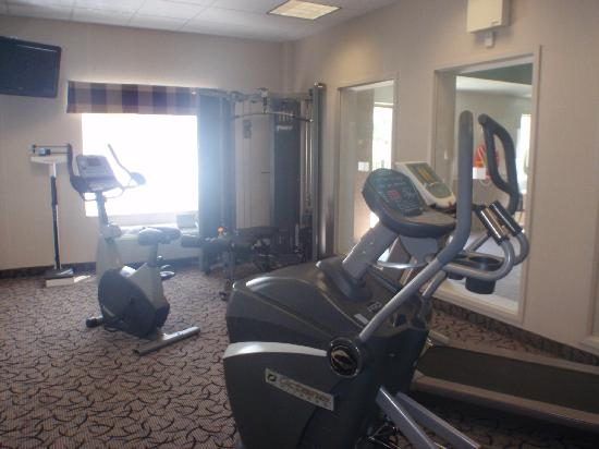 Holiday Inn Express Hotel & Suites Ottawa Airport : Fitness center