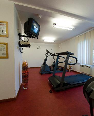 Hotel Erasme: Fitness