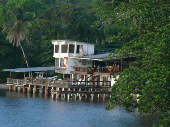Panama Divers PADI Dive Resort: TE ENCUENTRAS EN EL CARIBE