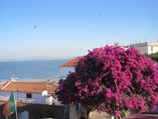 Miradouro de Santa Luzia : colori e il Tago dal Mirador