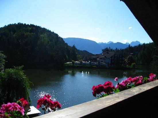 Hotel Weihrerhof: Vista dalla camera