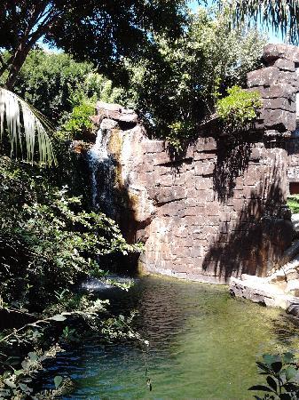 Bioparc Fuengirola: Well designed environment