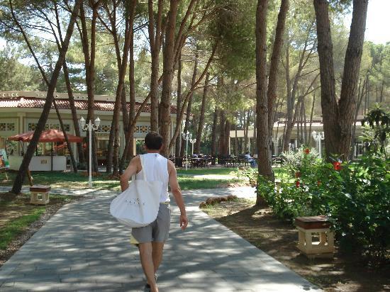 Ali Bey Resort Sorgun: konak merdivenleri...
