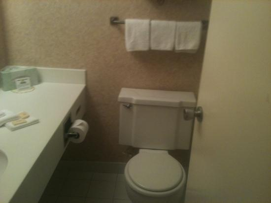 Days Inn Atlantic City Oceanfront-Boardwalk: bathroom very small but clean