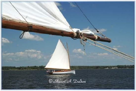 Skipjack H.M. Krentz: I took this from the deck of the H.M.Krentz - a lovely vista and typical of the sights to be see