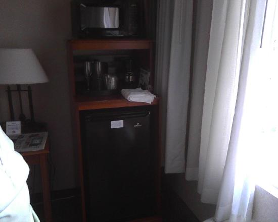 Holiday Inn Express Poughkeepsie: A nice frig and microwave.