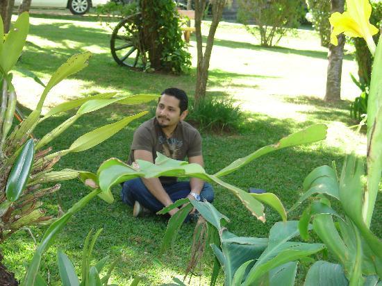 Concepcion de Ataco, El Salvador: jardin