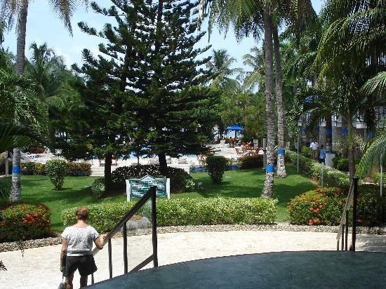 Royal Decameron Marazul : Jardines