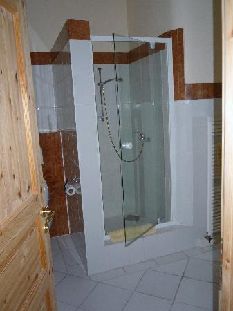 Gästehaus Loschwitz: Shower in spacious bathroom