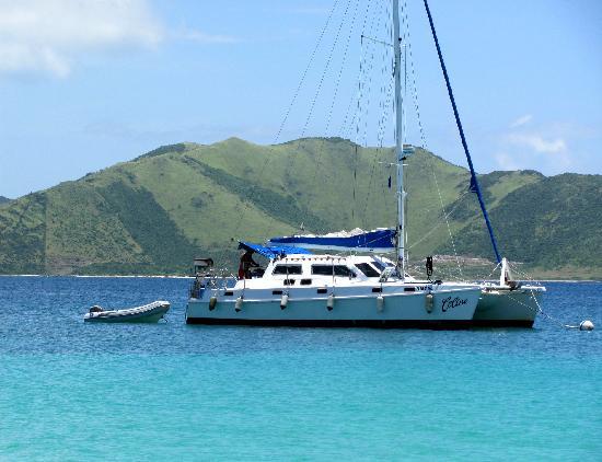Tintamarre Island: Celine
