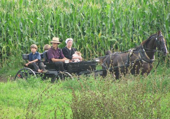 Округ Ланкастер, Пенсильвания: Amish Family