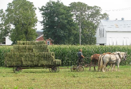 Lancaster County, Pennsylvanie : back to the barn