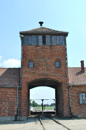 Pro Tours Cracow - Day Tours: Birkenau