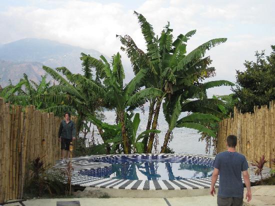 Zoola: pool area