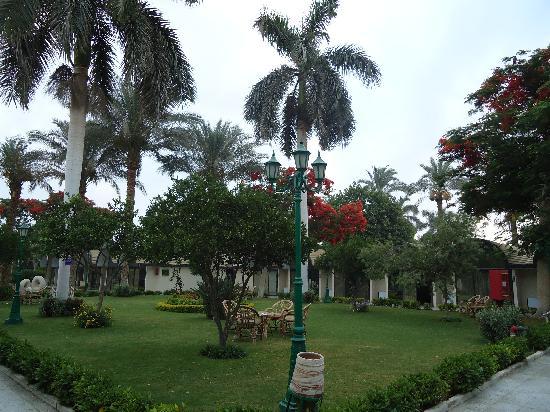 โรงแรม โอเอซิส: Paz y tranquilidad...hermosos jardines