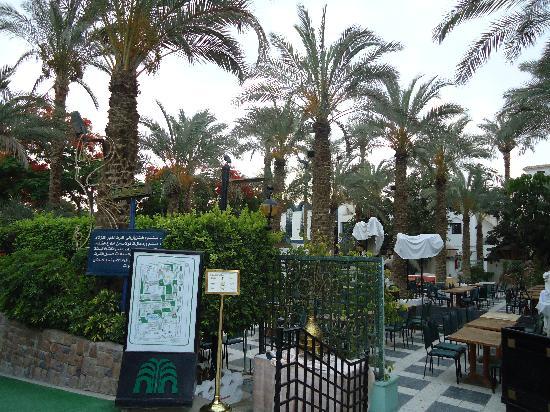โรงแรม โอเอซิส: paz y tranquilidad..hermosos jardines