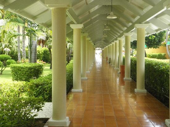 Iberostar Dominicana Hotel: Galería externa