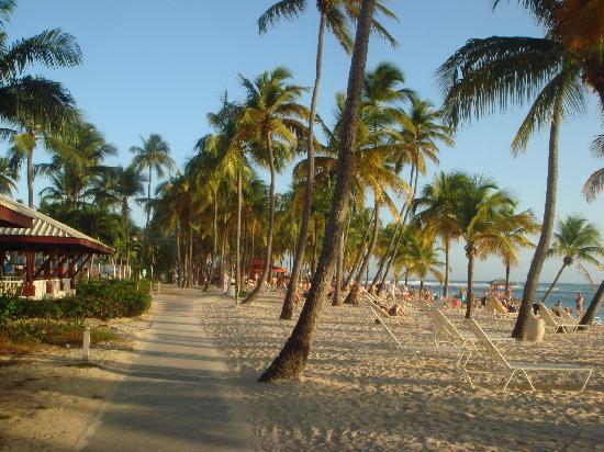 Club Med La Caravelle: plage
