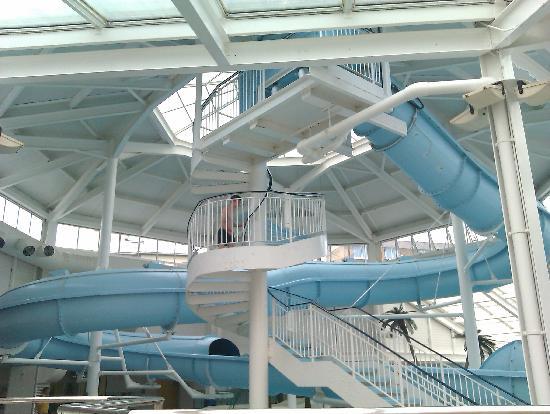 Merton Hotel: the pool slide
