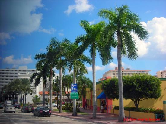 Tropics Hotel & Hostel: Collins Avenue