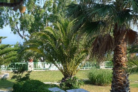 High Mill: Le jardin, digne d'un des jardins de la Riviera Française