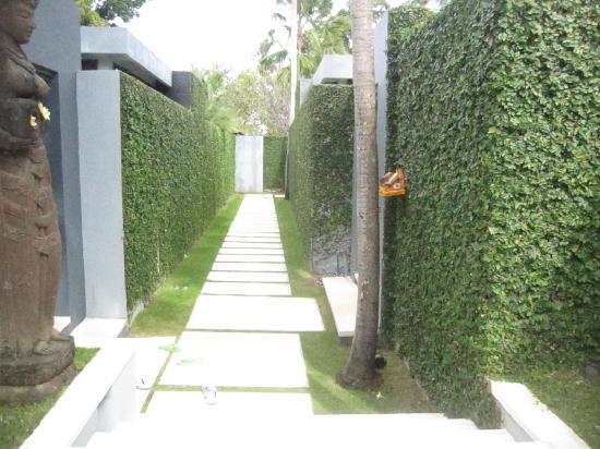 Kembali Villas: walkway to villas