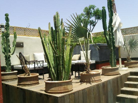Bellamane, Ryad & Spa: la terrasse sur le toit