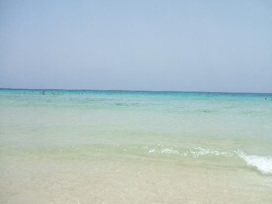 SBH Monica Beach : mare a Corralejo
