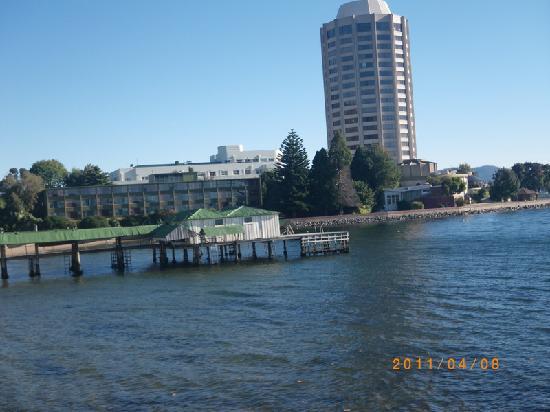 Wrest Point Water Edge: Sandy Bay: Wrest Point Water Edge: