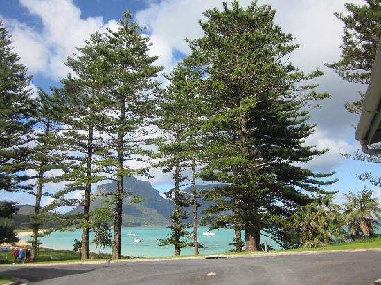 Pinetrees Lodge: Beautiful Lord Howe Island