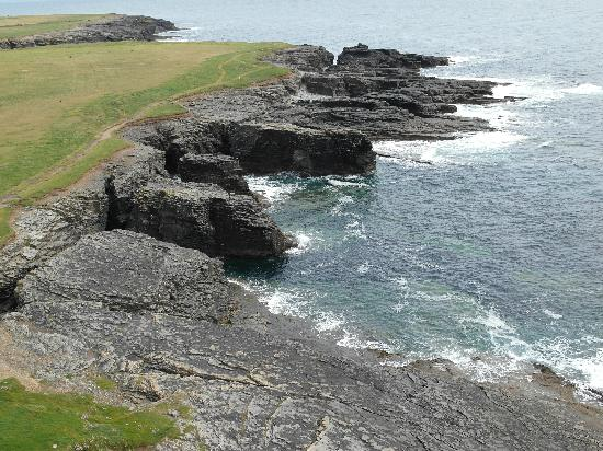 Hook Head Safaris: Magnificent Coastline taken from the Lighthouse