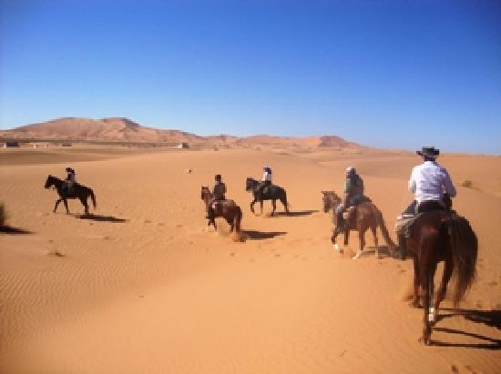 Equi Evasion : Sahara Desert tour