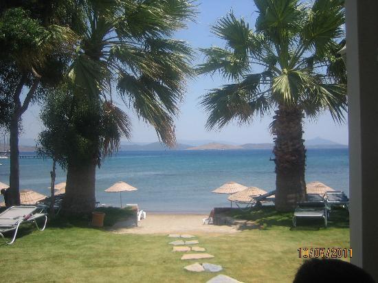 Ortakent, Turquia: Vista dalla piscina