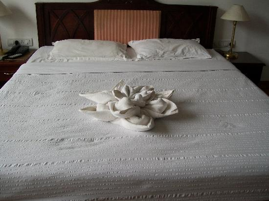 Hotel C 7: impressive creativity
