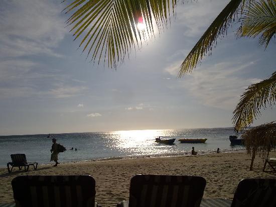 Las Sirenas Hotel & Condos: il mare e le palme
