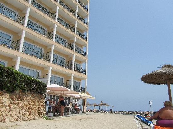Levante Park Hotel: The Levante - right on the beach