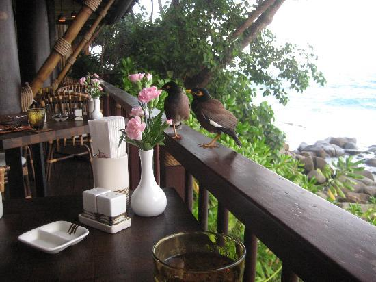 "Marina Phuket Resort: Lovely Breakfast Restaurant ""On the Rock"""