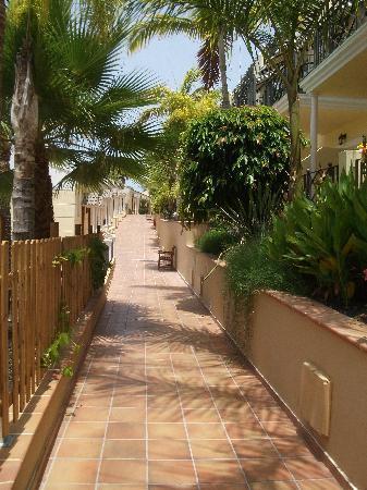 Gran Oasis Resort: The Complex