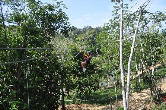 Clip N  Zip Canopy Tours: Ziplining FUN!